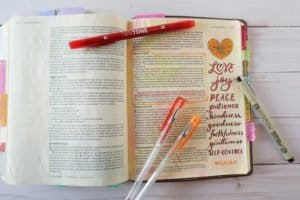 Fruit of the Spirit Bible journal