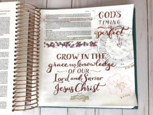 God's timing - Bible journal