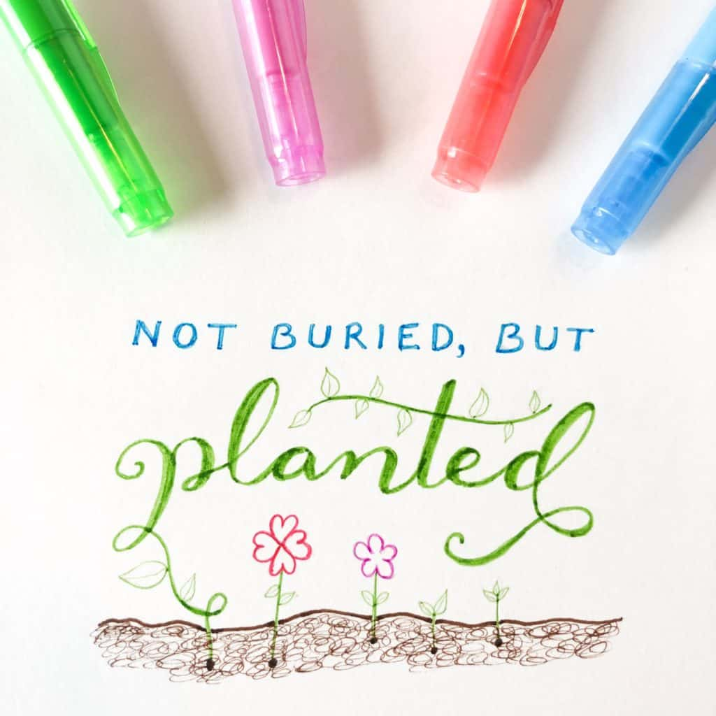 not buried, but planted