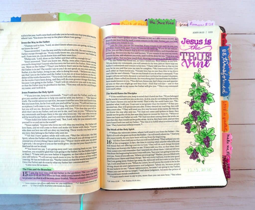 Jesus is the True Vine - Bible study and Bible journaling