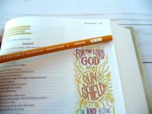 sunburst yellow colored pencil