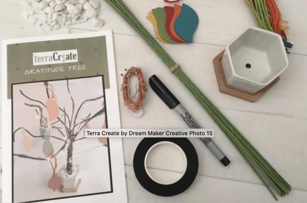 Terra Create box
