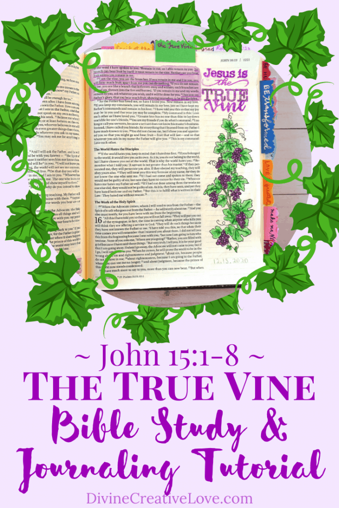 the vine and the branches parable meaning
