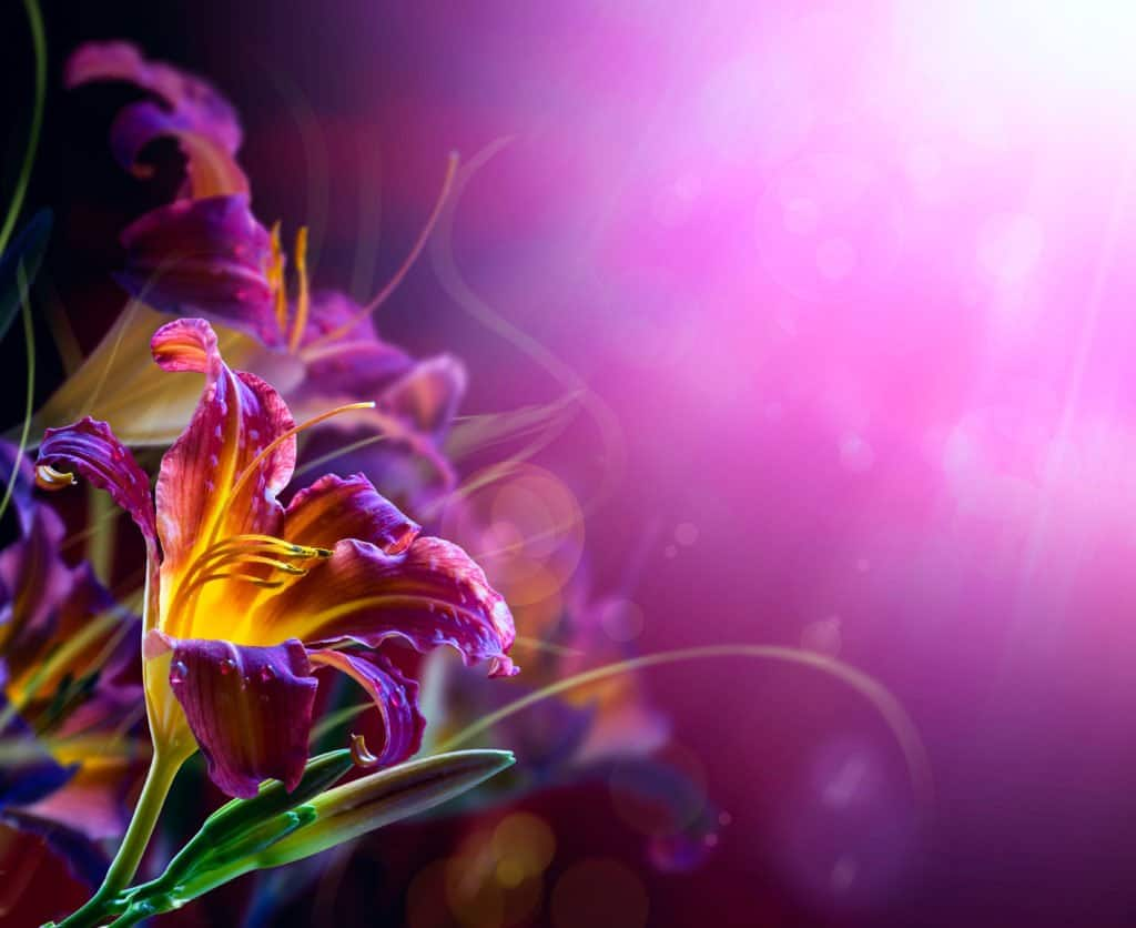 flower speak life words