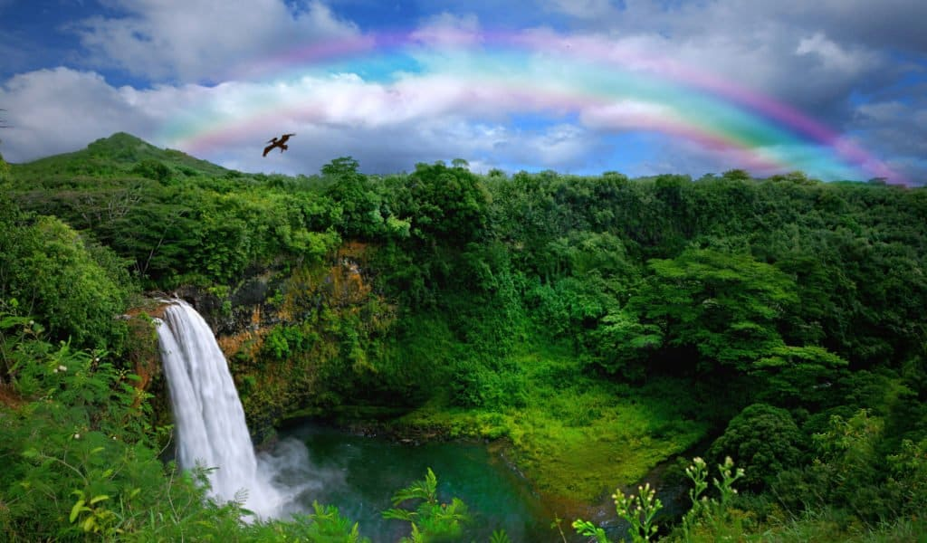 rainbow - a sign of hope and God's promises